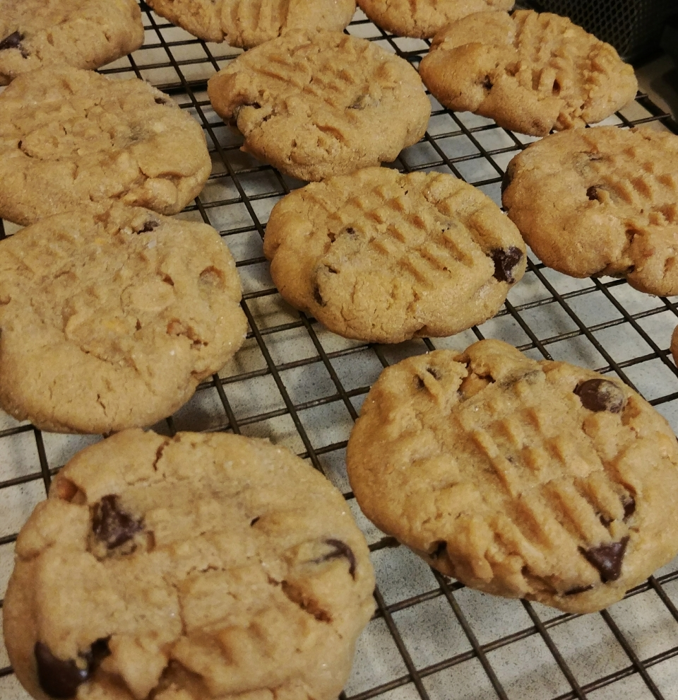 peanut butter chocolate chip cookies glass animals
